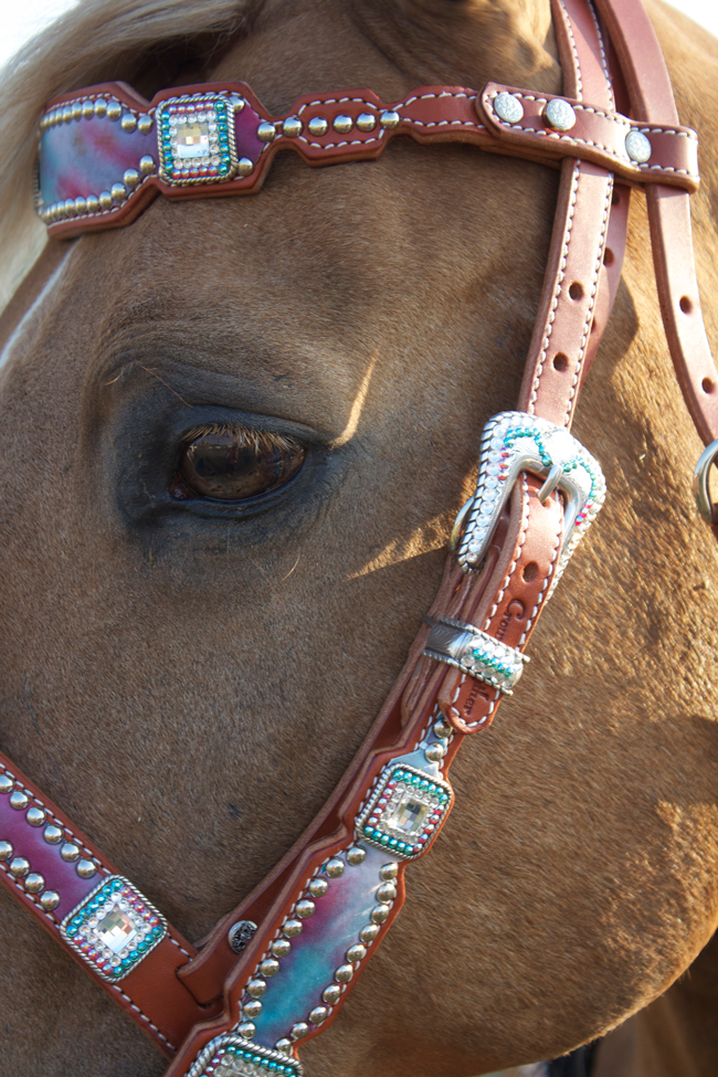 Crown Leather headstall