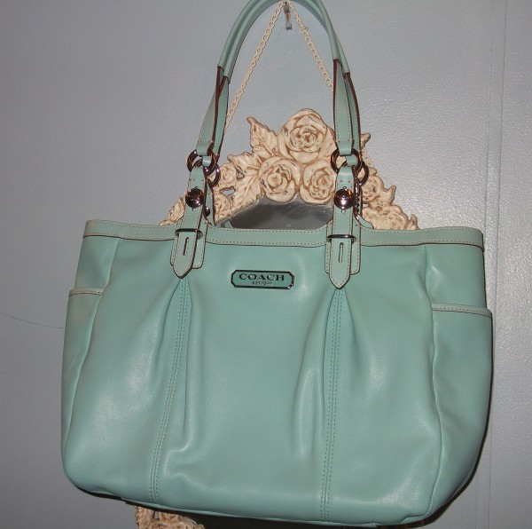 Have You Seen Me? Coach Bag Search