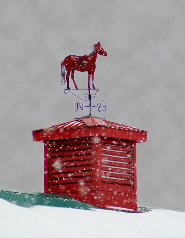 Red Horse Weather Vane