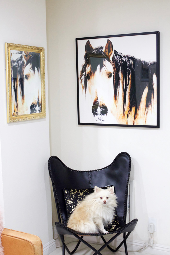 a neglected corner is decorated with equine art, a butterfly chair, and mirror